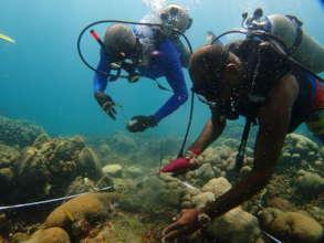 Fishermen coral gardening