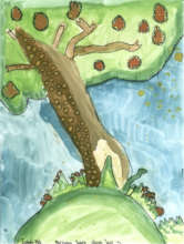 Trees were the theme of July's art gallery!