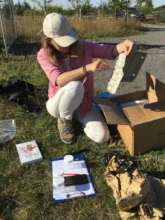 Moth trapping for the Nature in Harmony project
