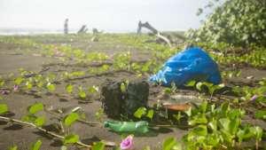 Awareness Beach Clean Up in Costa Rica