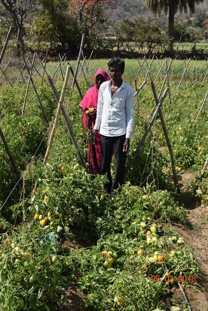 Provide 18 farmers with irrigation for life