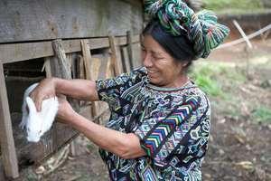 Women Raising Livestock