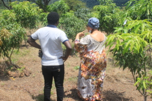 Fruit trees = nutritious fruits for the girls