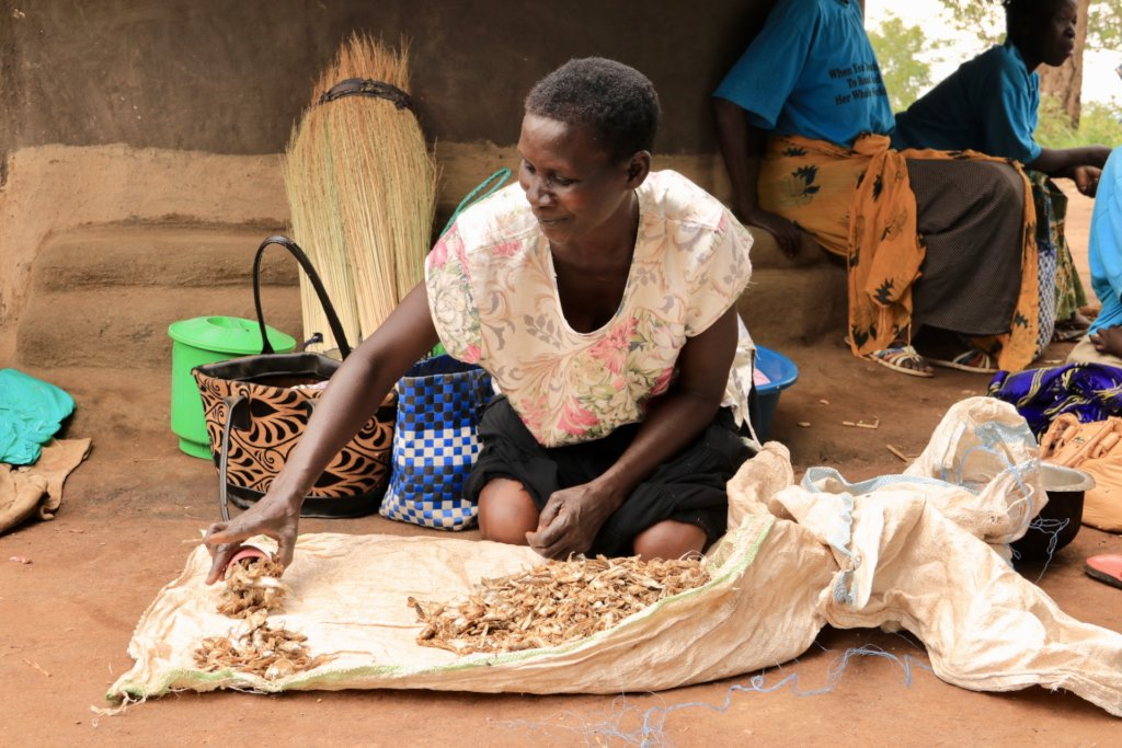 Finance Microloans to Empower Women in Uganda