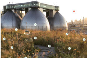 Newtown Creek Alliance's cool new use of our icons