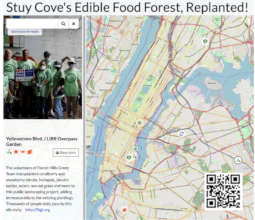 Charting native plants seeded by Stuy Cove, NYC