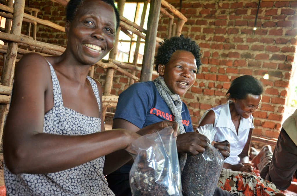 Fostering Sustainable Women's Cooperatives