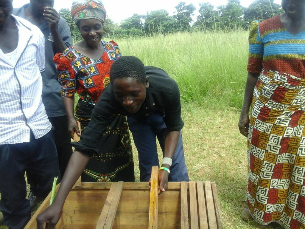 Help Zambian beekeepers get much-needed equipment