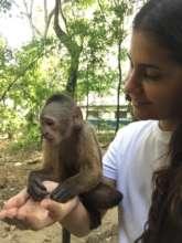 SAI zoo keeper holds adorable baby-monkey.