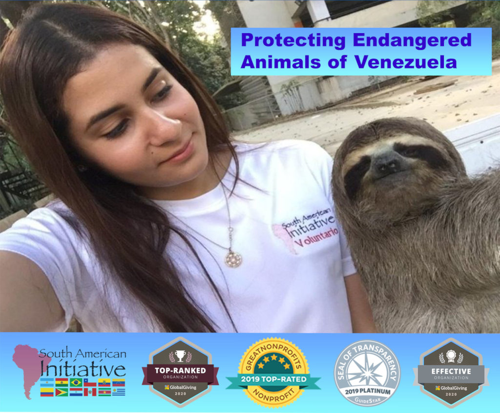 Saving Malnourised Venezuela Animals
