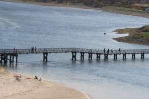 Save our Scottish Bridge
