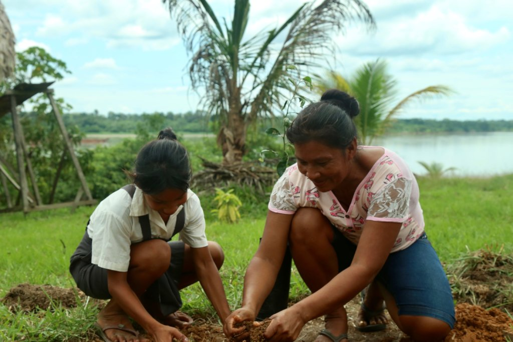Replanting the Peruvian Amazon's fruit trees