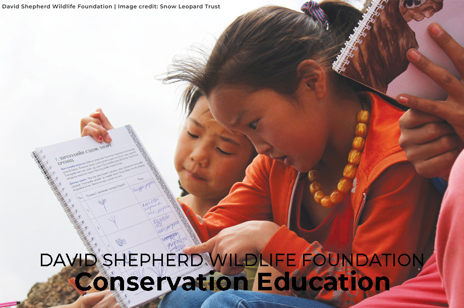 Conservation Education