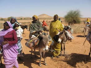 Donkeys provide essential transport