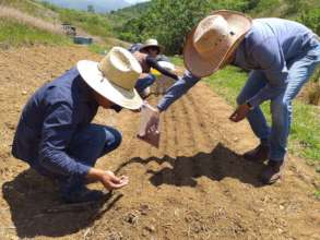 Preparing orchard and milpa planting