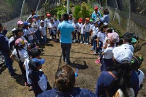 Childrens education program