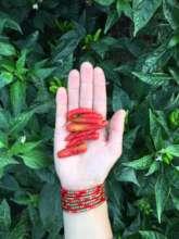 Organic chilies