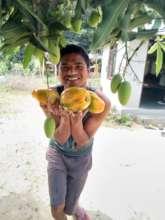 Sudarshan and his organic papayas