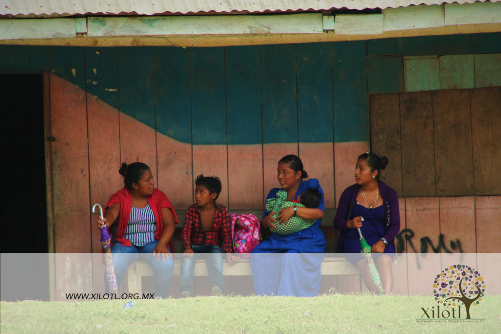 Migration: roots of belonging in Lacandon Jungle