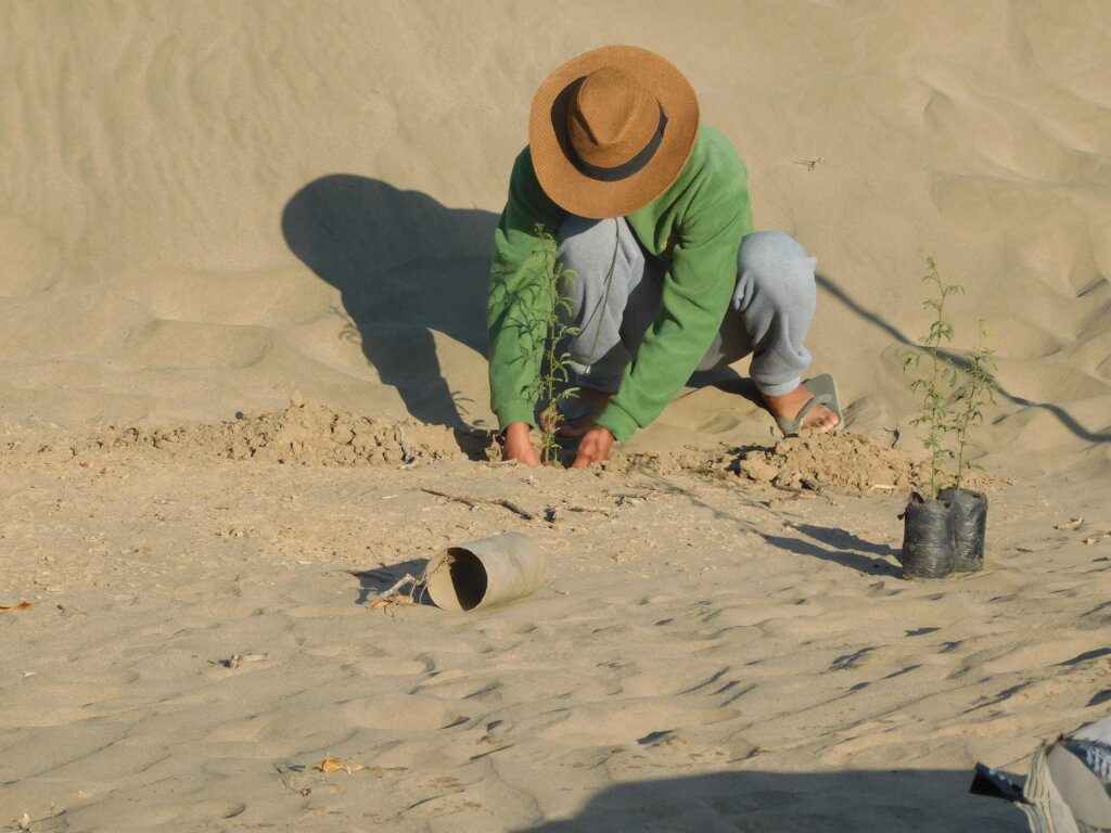 Help communities to conserve Peru's Dry Forests