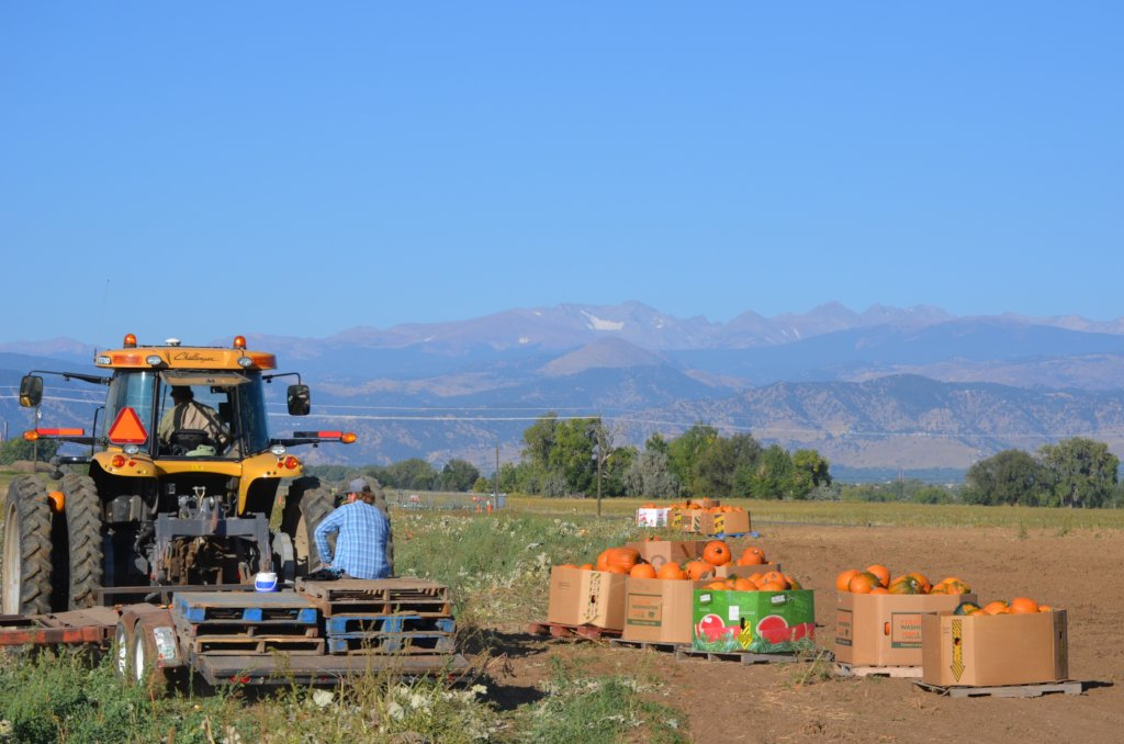Help Provide Labor for Family Farms in Colorado