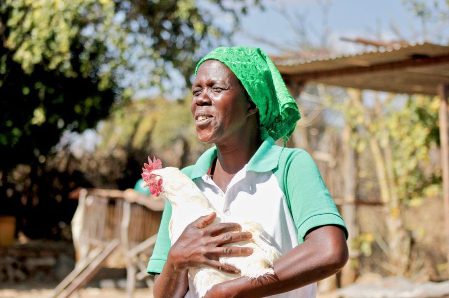 Restore 600 rural women's livelihoods in Zimbabwe
