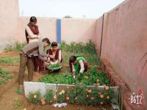 Nutri Garden In school