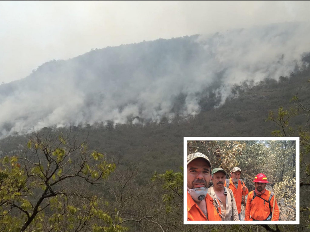 Train Local Brigades to Fight Forest Fires in MX