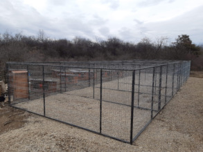 new kennels waiting for tiles and then dogs