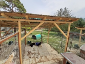new built kennel