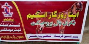 Income Generation Scheme Launched for Thar Women