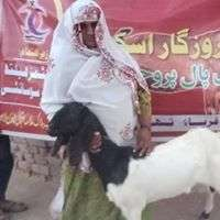 Women Receiving her Goat