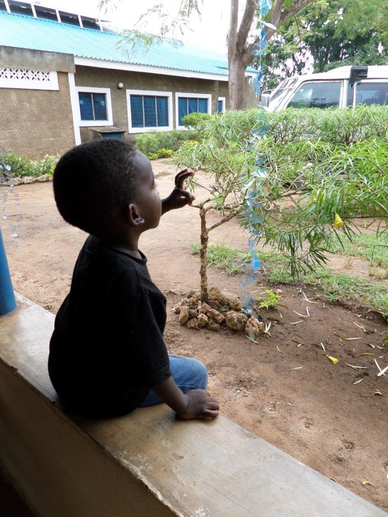 17 abandoned babies in Kenya need your help