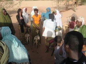 Akokan mentors with goats.
