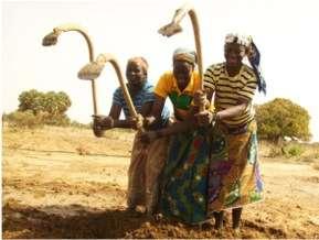 Tirboye mentors help plant the school garden