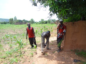 Workers at work at the farm