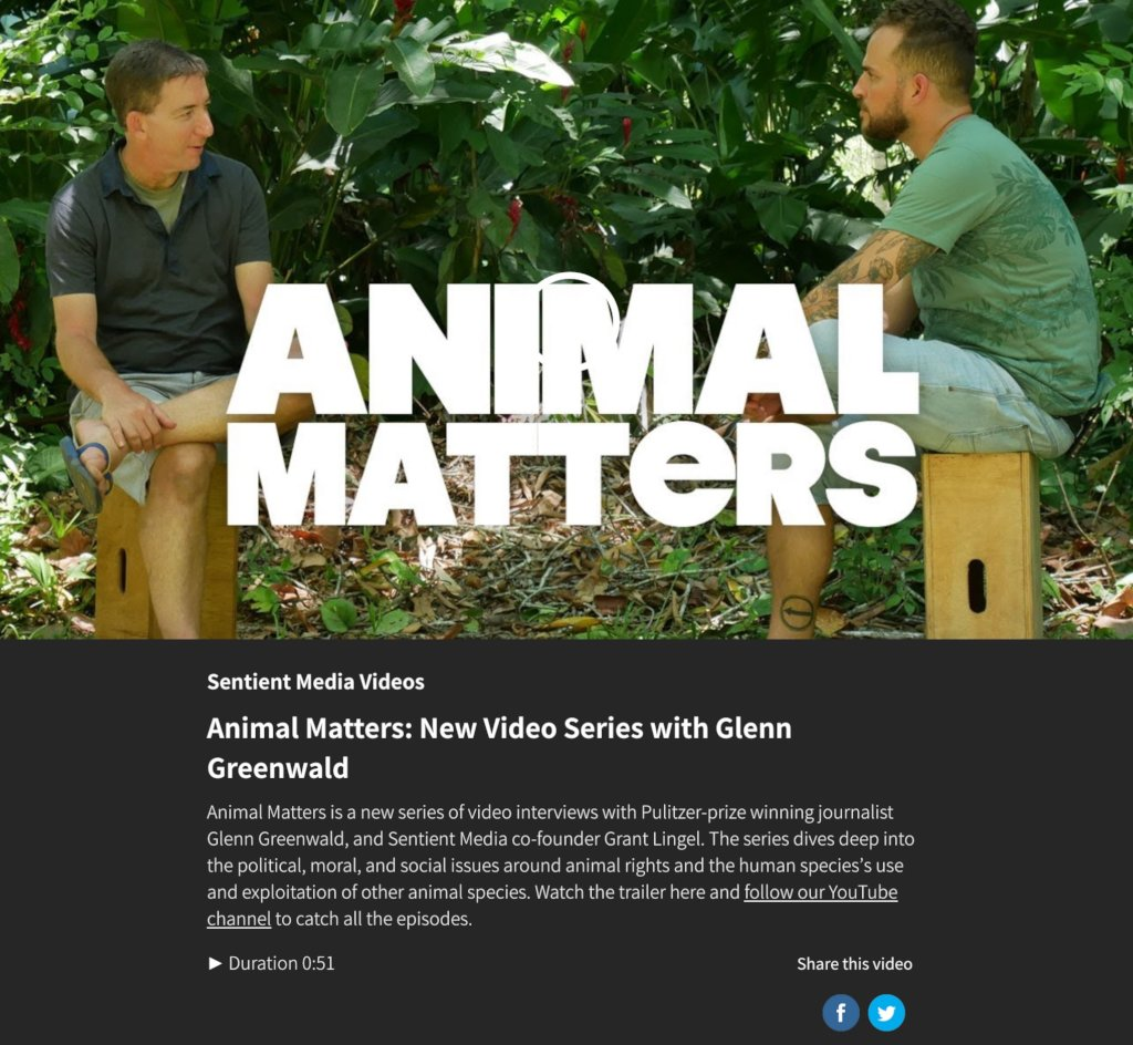 Animal Farming & the Jungle: Reporting from Brazil