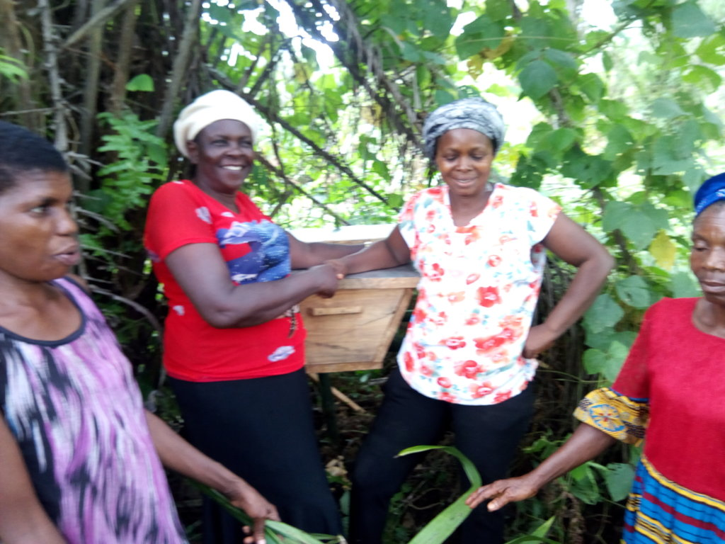 Lift 50 Rural Women Above Poverty Level In Nigeria