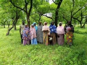 Conserve 5 Shea Parkland in Ghana with Beekeeping