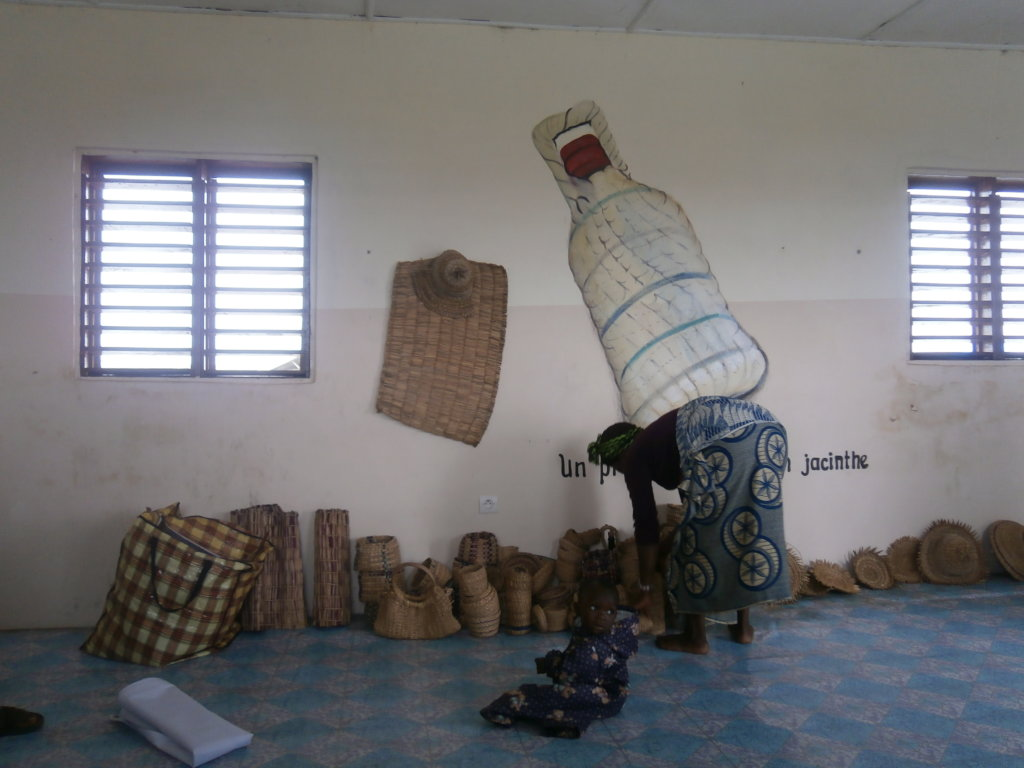 Improve the income of 50 rural poor women in Benin