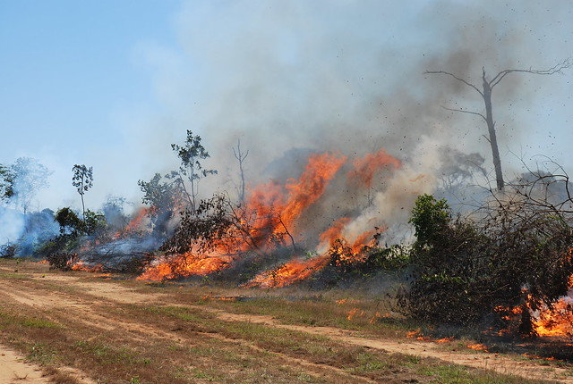 Help an Indigenous Village Contain Amazon Fires