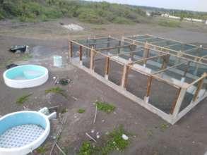 Hawaii hatcheries and rehabilitation tanks