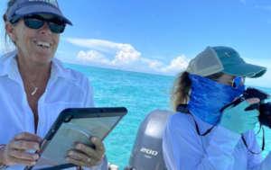 From Bahamas Marine Mammal Research Organization