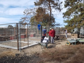 new kennel for puppies