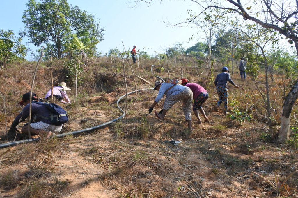 Planting of 15,000 trees in Northern Philippines