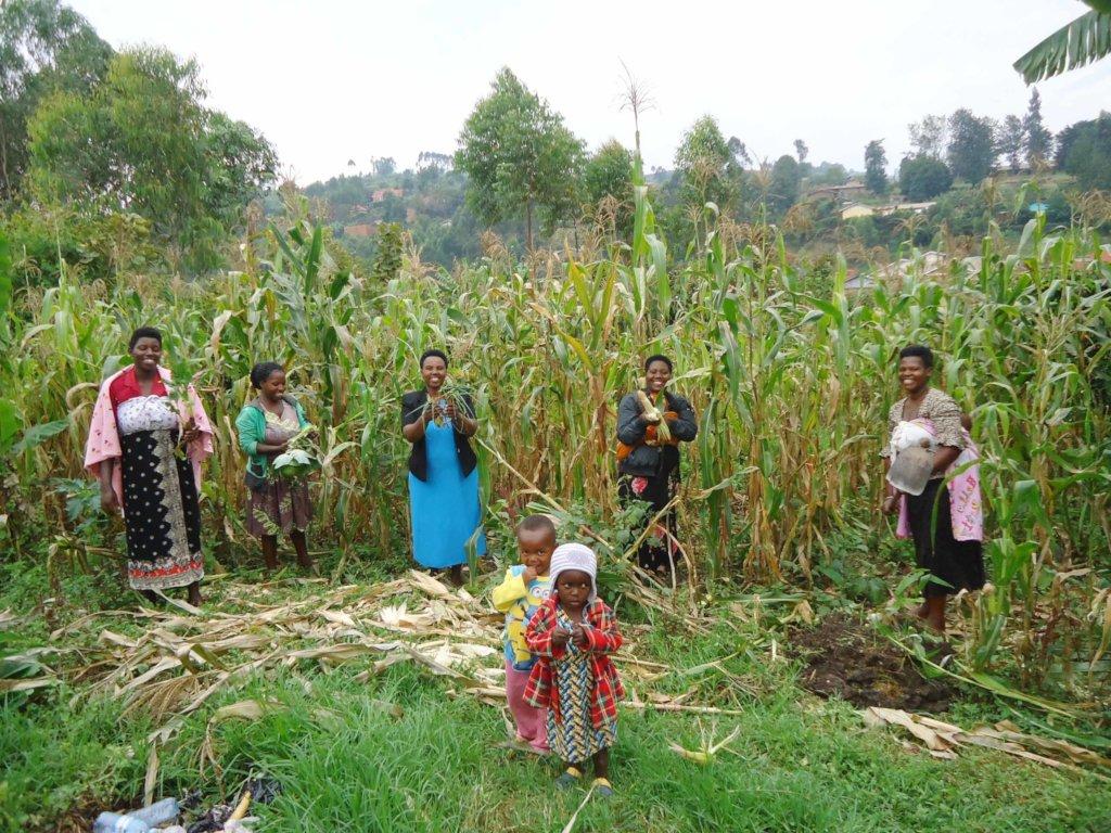 NYABIKONI WOMEN VEGETABLE GROWERS KABALE UGANDA