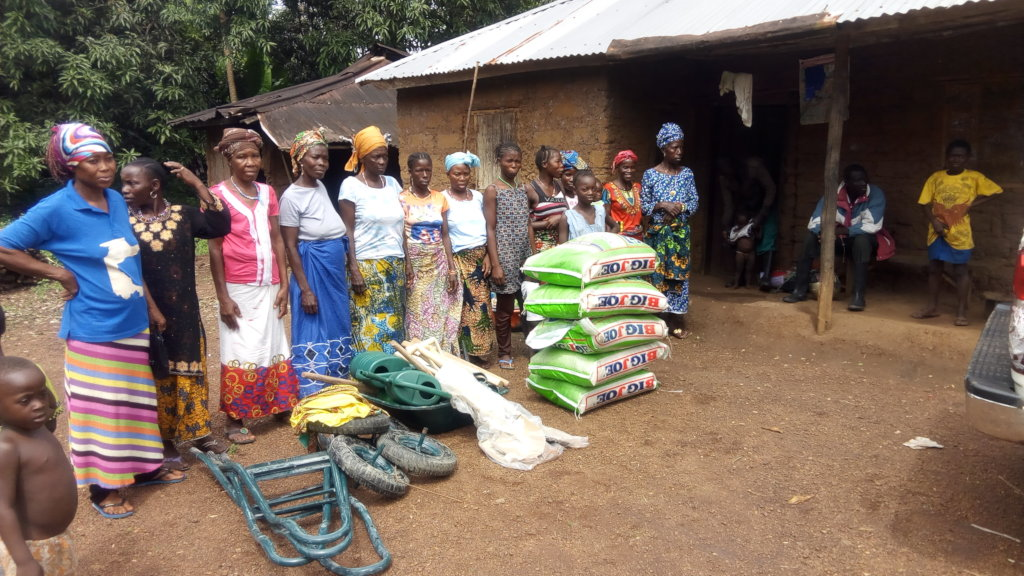 SUPPORT TO 40 FARMERS TO FIGHT HUNGER IN SINKUNIA.