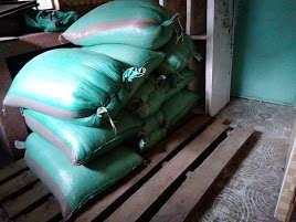 Maize bought in bulk for Feeding program