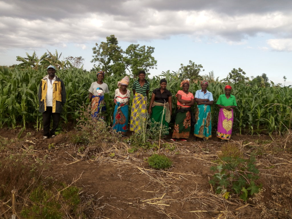 Community Livelihoods and Empow-erment Project