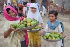 Girls serving mango to guests
